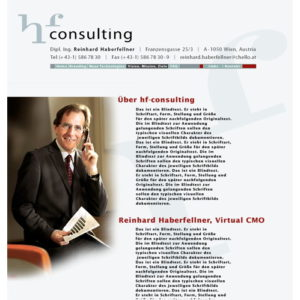HF Consulting Layout